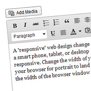 pic-content-management-system-edit-page-300