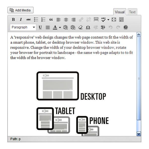 pic-content-management-system-edit-page-600 copy